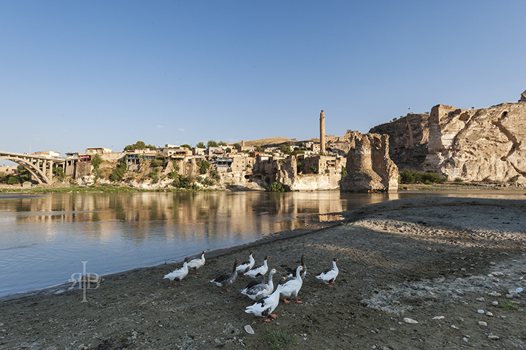 Hasankeyf with Geese