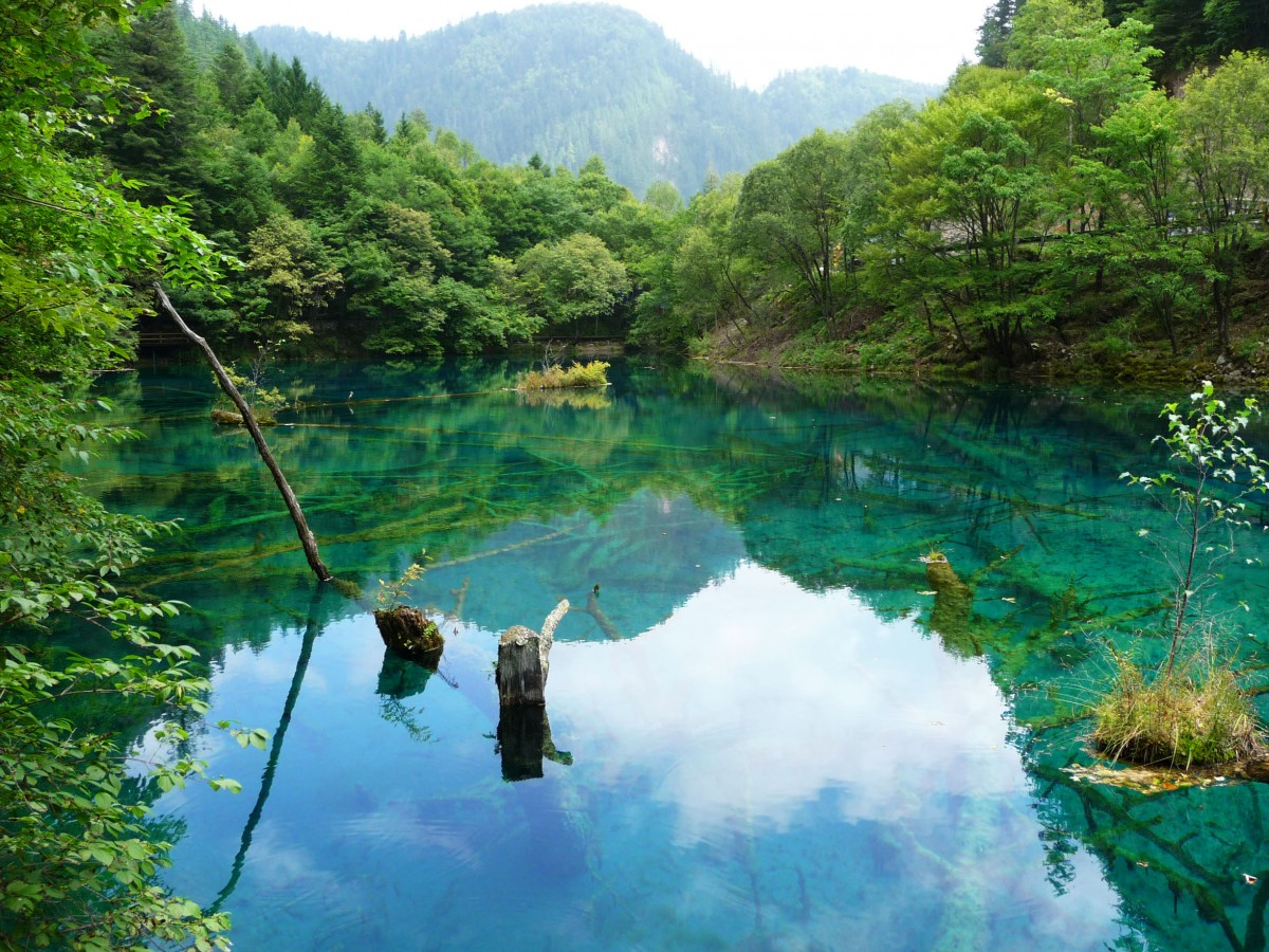 Coloured water Jiuzhaigou