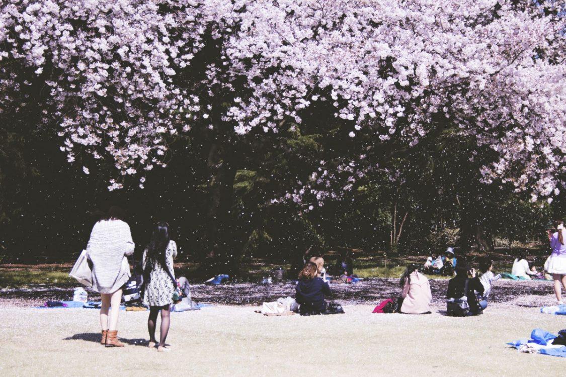Japan. ©Bruce Moerdjiman