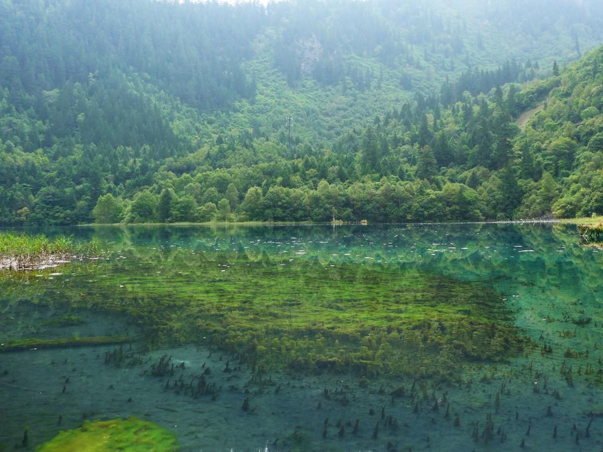 Water Jiuzhaigou
