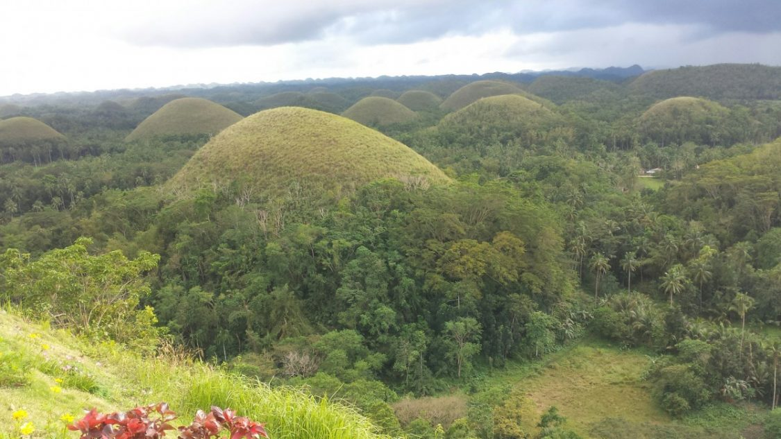 Chocolate Hills in Bohol.
