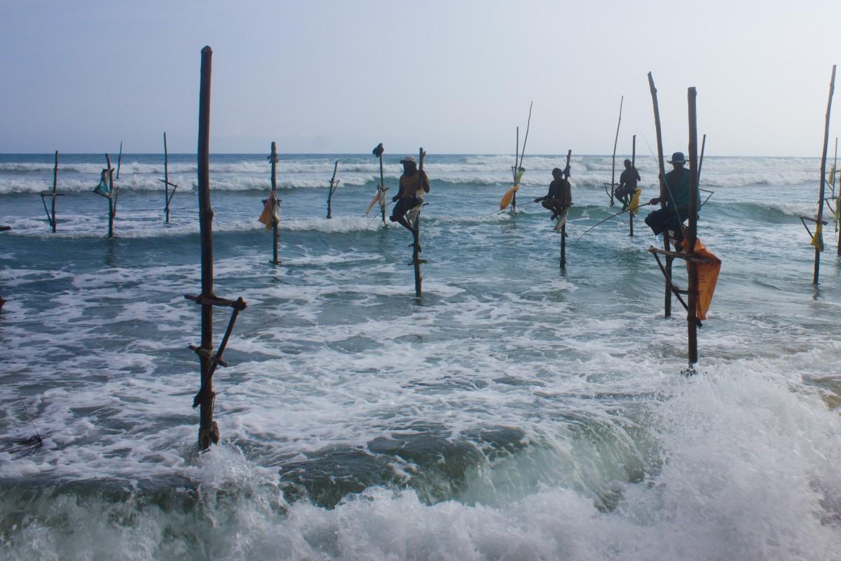 Stilt fishermen near Mirissa