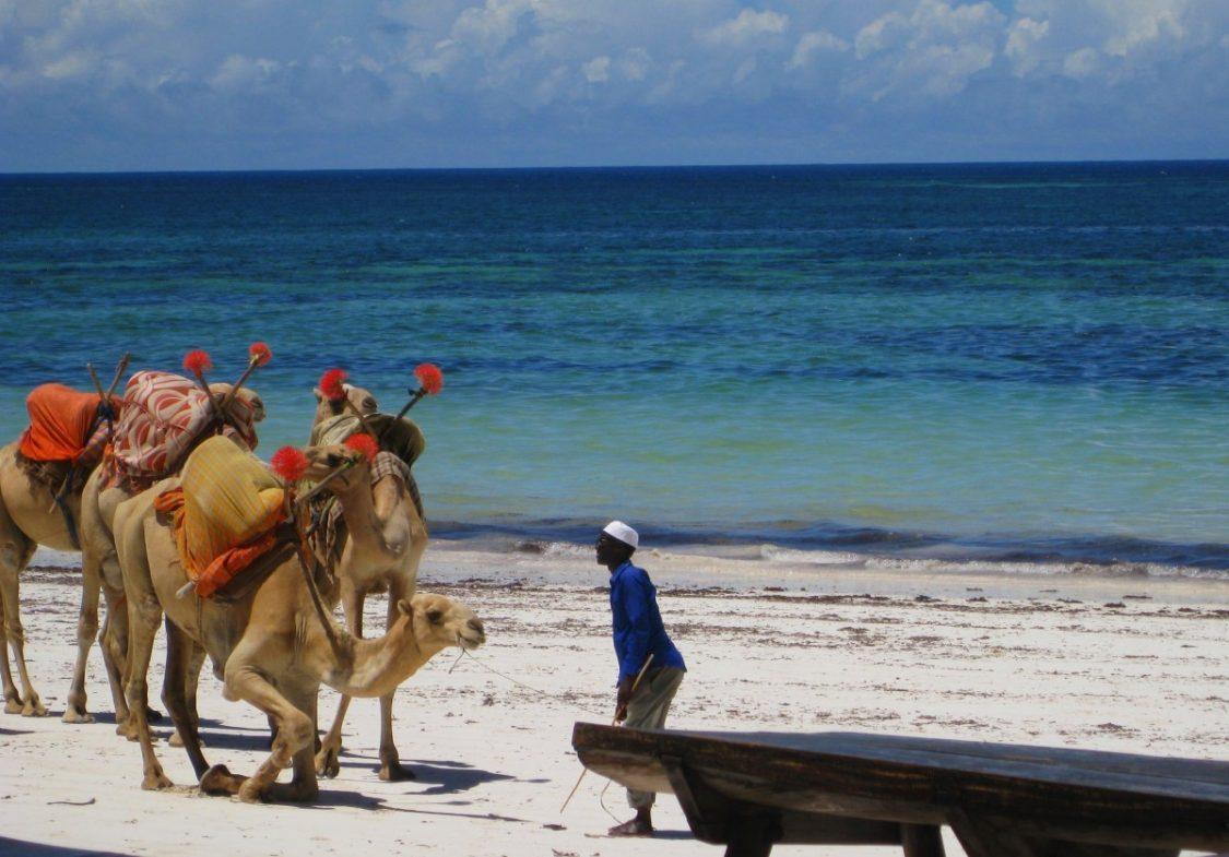White sand beach Kenya. ©Bunch of Backpackers.