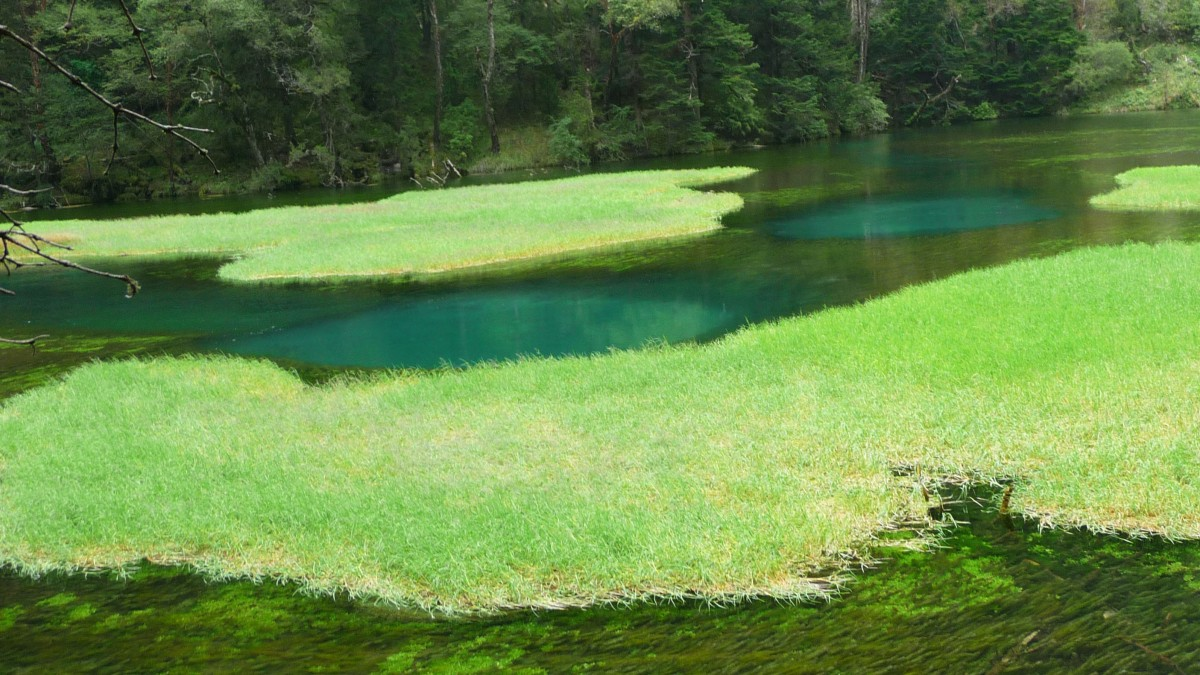Jiuzhaigou green lakes