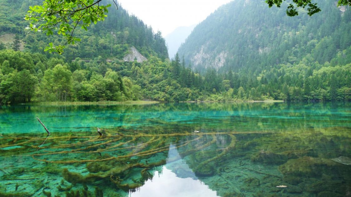 Mirror lake Jiuzhaigou. Copyright Bunch of Backpackers.