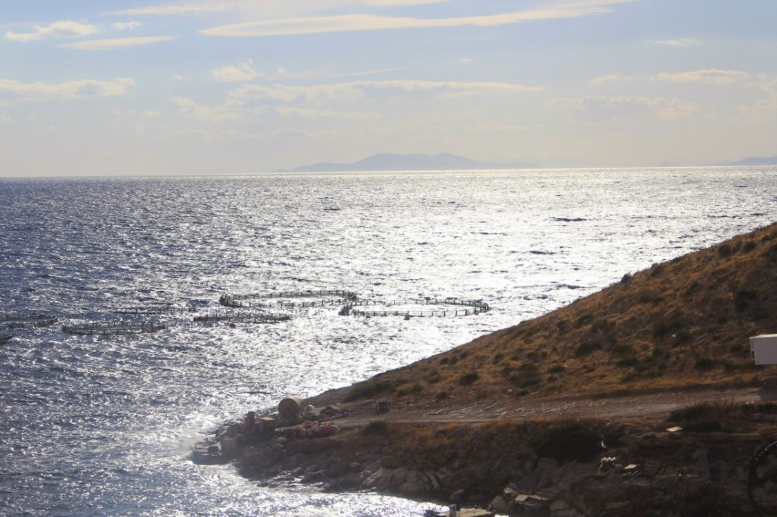 Coast line Cape Sounion