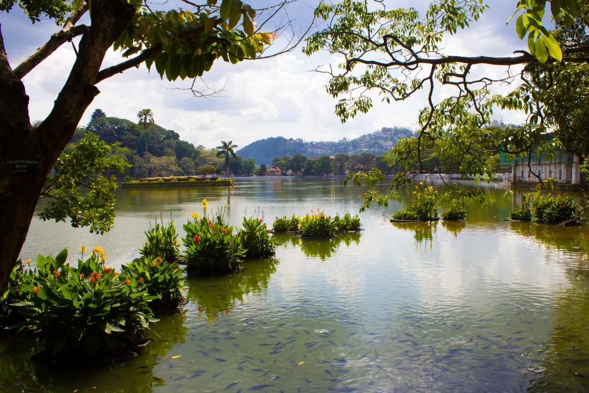 Kandy Lake, Sri Lanka Bunch of Backpackers-4149