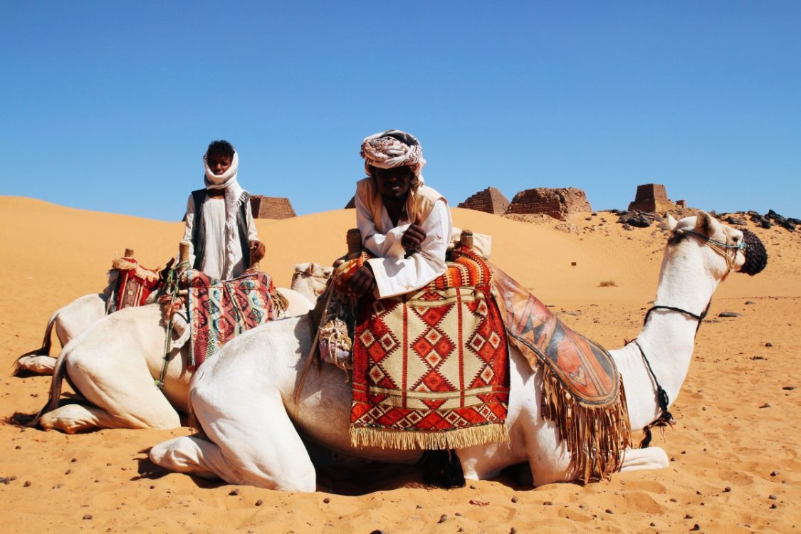 White camels and their drivers at the Meroe site Sudan